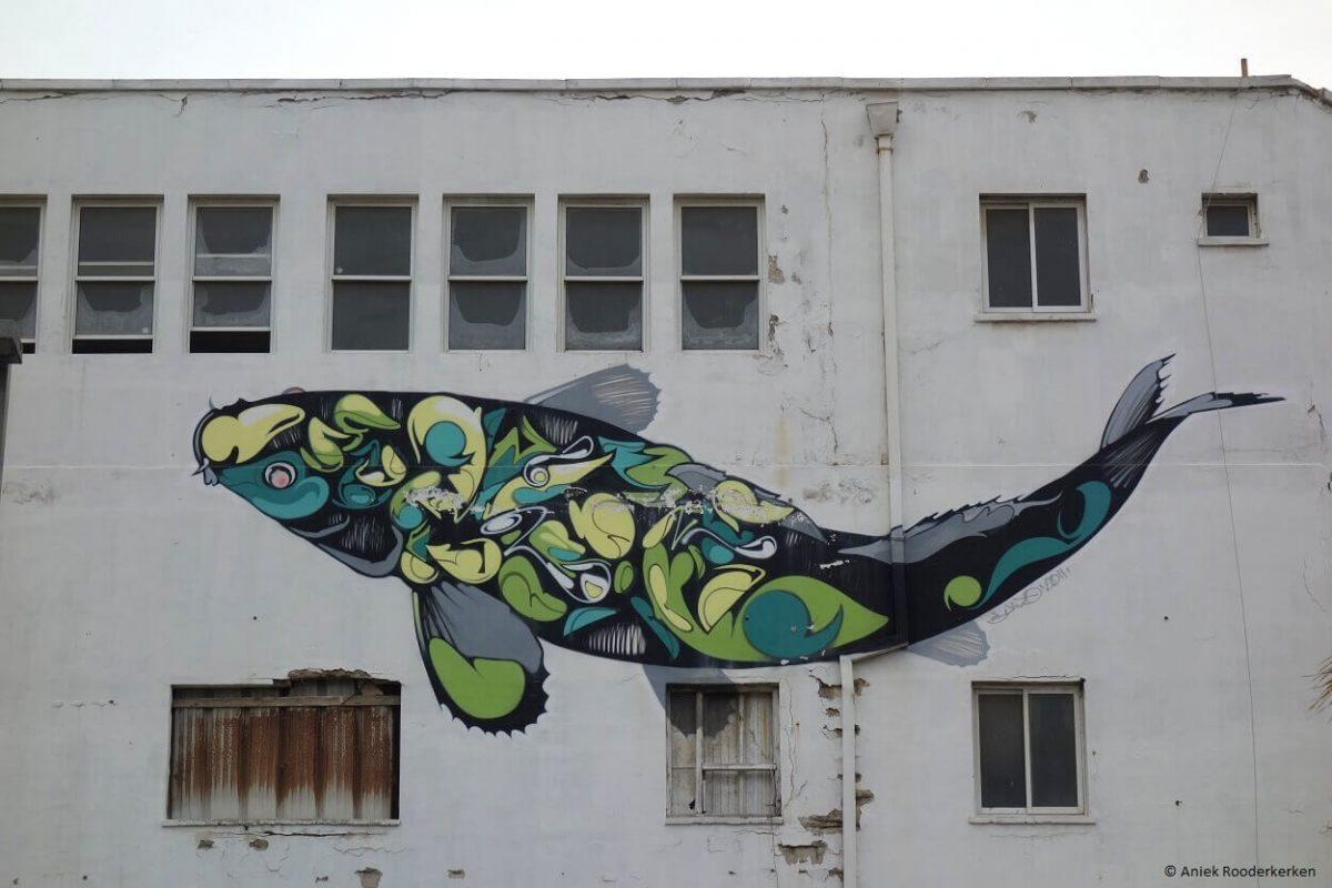 Tel Aviv by bike - Street Art in Jaffa