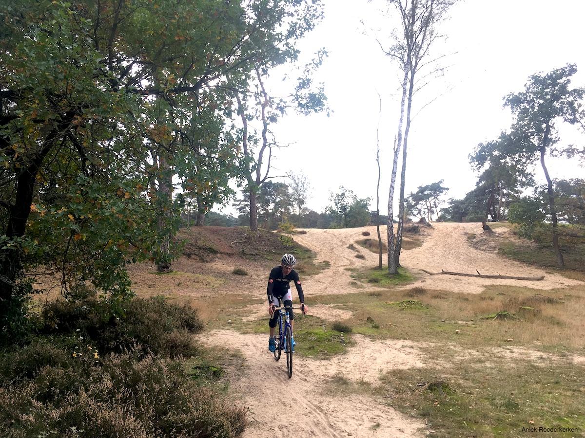 Mountainbiken over de Utrechtse Heuvelrug