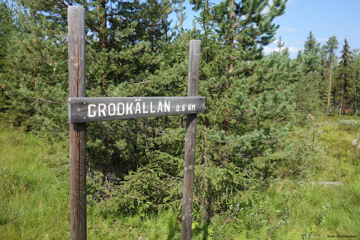 Hiking to Grodkällan in Zweeds Lapland