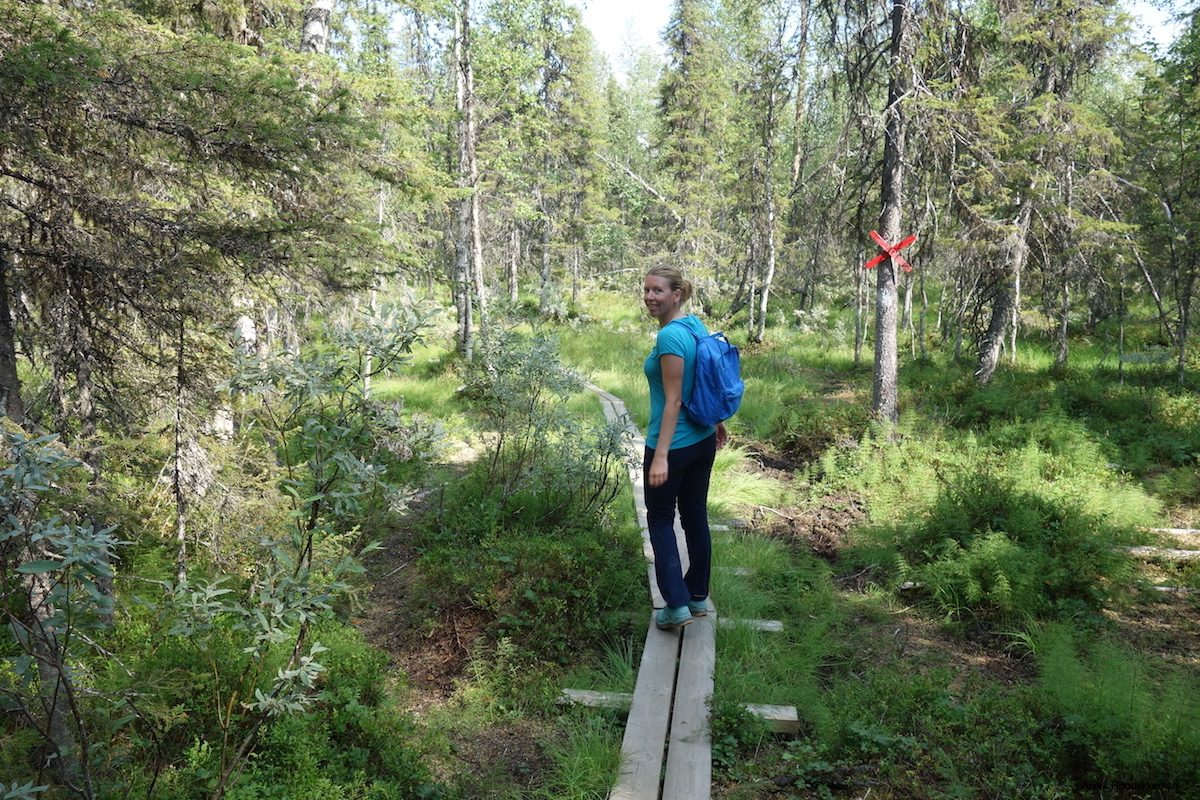 Slengmyran: Hiking in Swedish Lapland