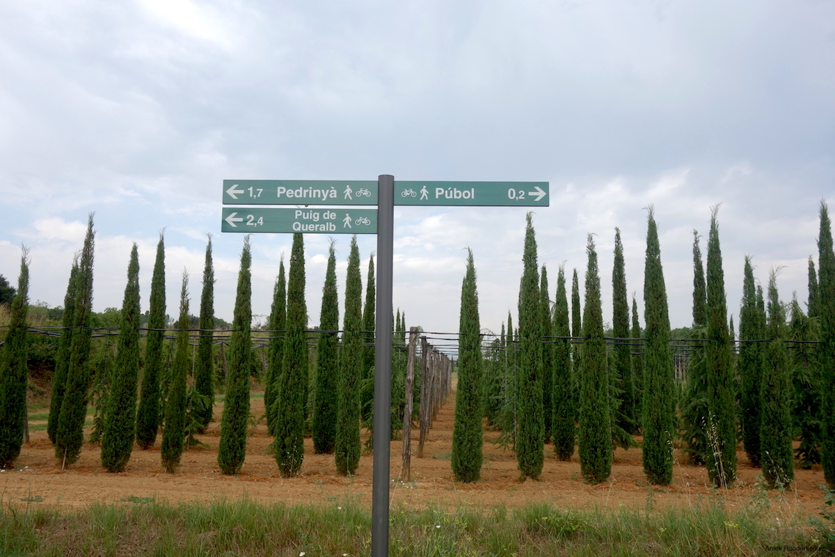 Cycling to Pubol, Cycling in Catalonia
