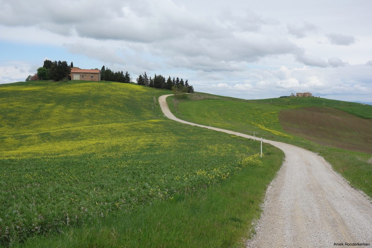 I cycle part of 'l Eroica, on the white roads of Tuscany