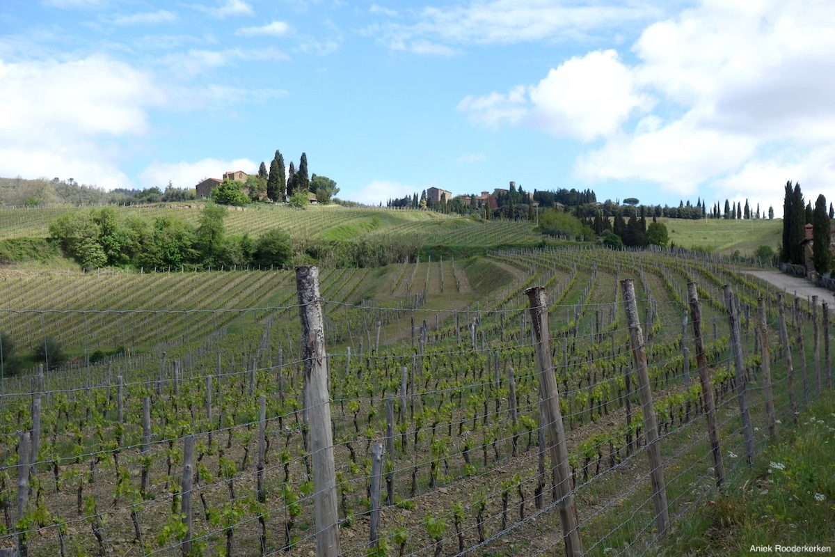 Village in Chianti