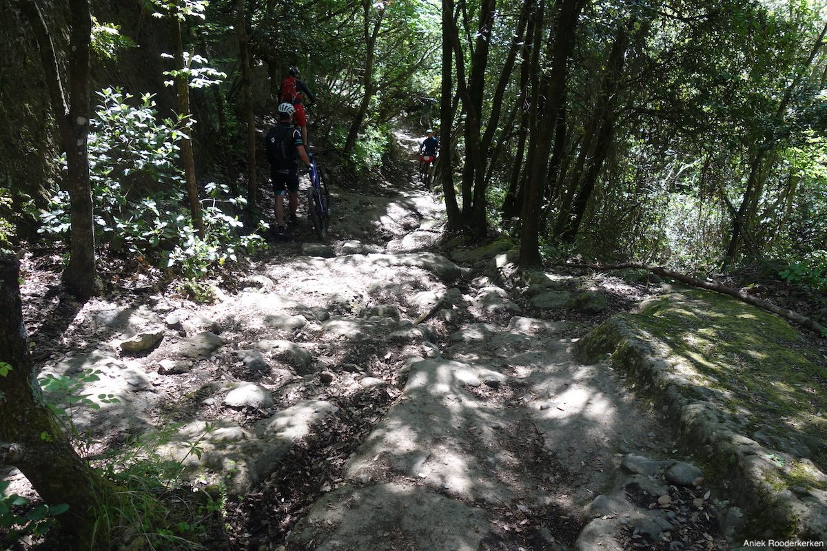 Single trail at Nemi: Cyclists and hikers in two directions