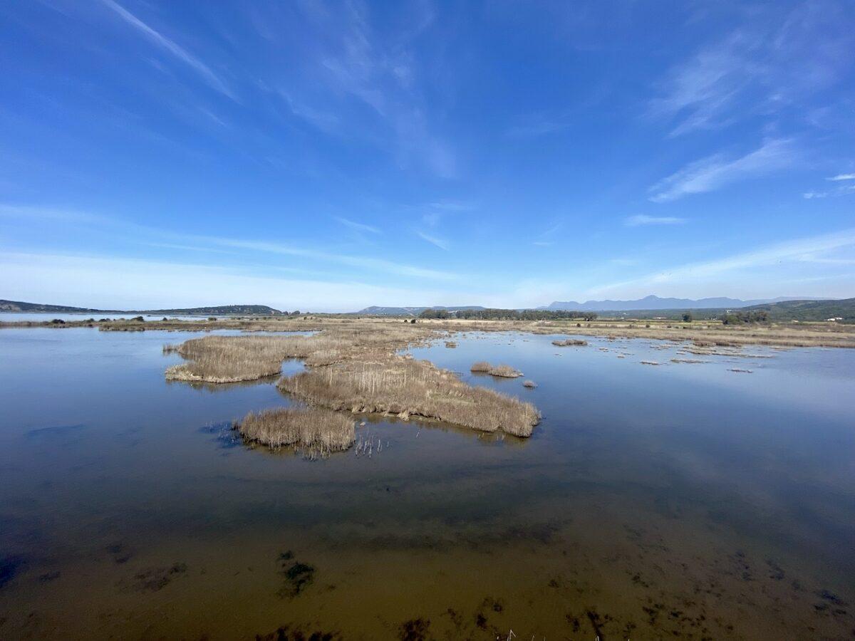 Brak water in de Lagune