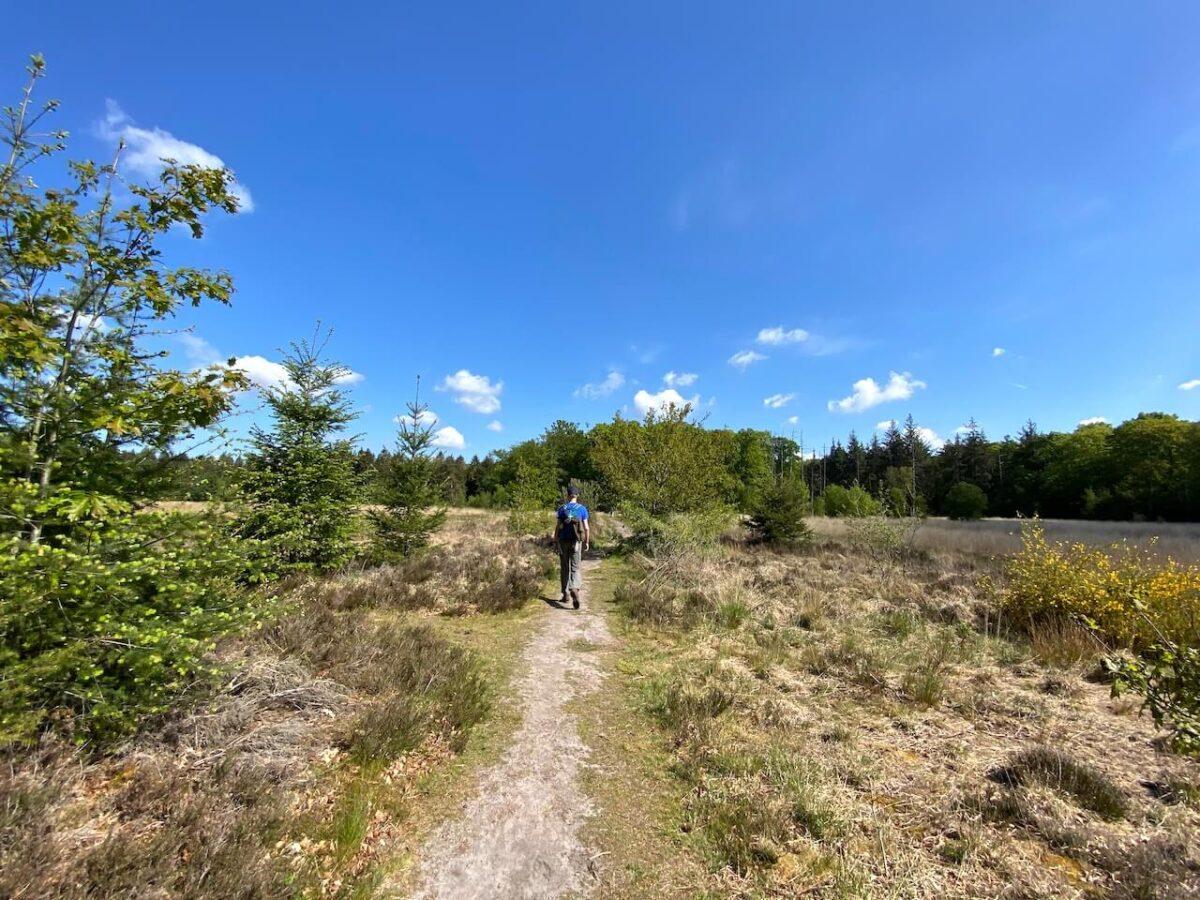 Walking on narrow paths between the Blanke Veen