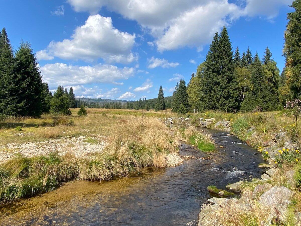 Nationaal Park Šumava